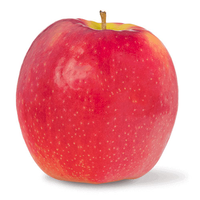 APPLES PINK LADY